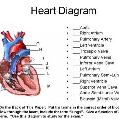 Heart Diagram Quiz Games Vav Box Wiring Unit 7 Part 1 Blood And --