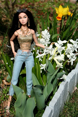 A Poppy In The Garden