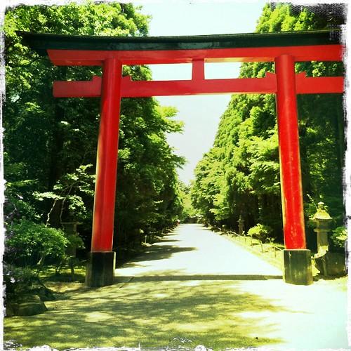 Kirishima-jingu torii