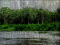 Angola - Rio Kuanza