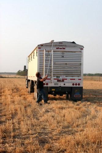 Johan tarps the truck