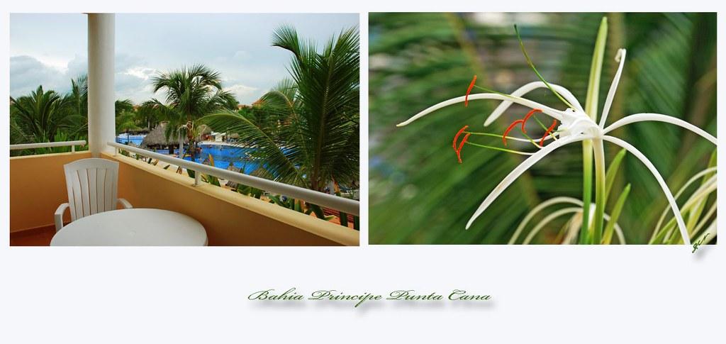 Bahia Principe Punta Cana2
