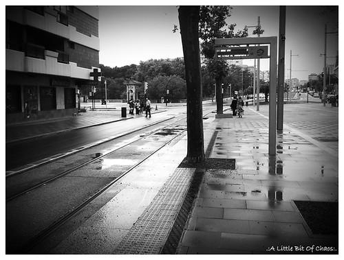 Esperando el tranvía