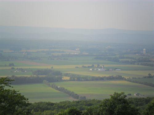 NV View