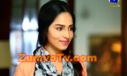 Bechari Mehrunnisa Episode 1 Full by Geo Tv Aired on 30th November 2016