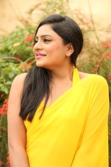 South Actress Deepika Das Hot in Yellow Sari Photos Set-2 (8)