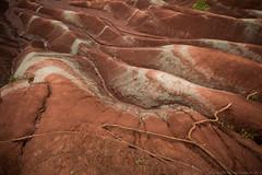 "Cheltenham Badlands Mineral Deposits • <a style=""font-size:0.8em;"" href=""http://www.flickr.com/photos/65051383@N05/9882404796/"" target=""_blank"">View on Flickr</a>"