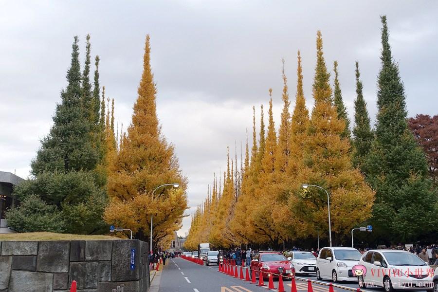 日本東京,東京,東京景點,銀杏並木,銀杏樹,銀杏葉 @VIVIYU小世界