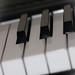 Harmony/Harmoni