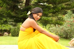 South Actress Deepika Das Hot in Yellow Sari Photos Set-2 (5)