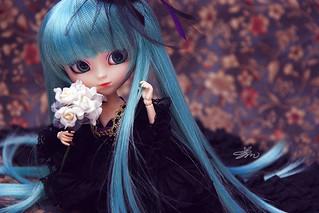 Lady Miku