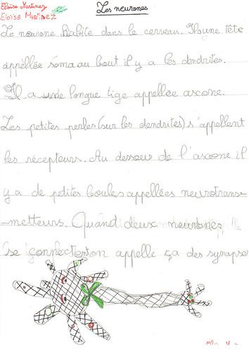 Schéma neurone & communication6