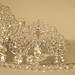 the tiara fits!