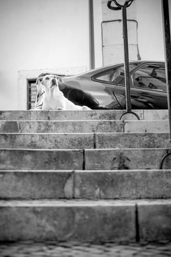 Lisbonne-57.jpg