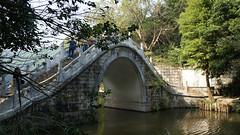 Fairly Lake Botanical Garden, Shenzhen, China