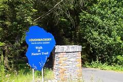 LoughmacroryScene3