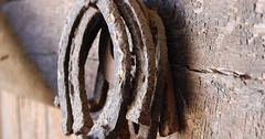 """Das Hufeisen. Die Hufeisen. Vier alte und verrostete Hufeisen hängen an einem Nagel. • <a style=""""font-size:0.8em;"""" href=""""http://www.flickr.com/photos/42554185@N00/29996282936/"""" target=""""_blank"""">View on Flickr</a>"""