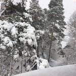"""Vy från mitt klassrum. #snö #skola #sbgskola #duvboskolan #vinter #vinterland <a style=""""margin-left:10px; font-size:0.8em;"""" href=""""http://www.flickr.com/photos/131645797@N05/30243585554/"""" target=""""_blank"""">@flickr</a>"""