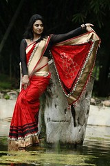 South Actress Deepika Das Traditional Photos Set-1 (3)