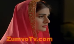 Sange Mar Mar Episode 14 Full by Hum Tv Aired on 1st December 2016