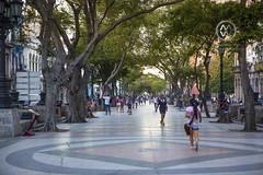Street scenes on the Paseo del Prado in Havana.