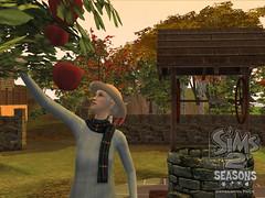 Les Sims 2 au fil des saisons