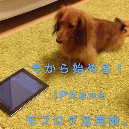 今から始める!iPhoneモブログ活用術。