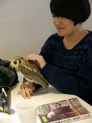 """Owl Cafe 9 • <a style=""""font-size:0.8em;"""" href=""""http://www.flickr.com/photos/66379360@N02/10588776976/"""" target=""""_blank"""">View on Flickr</a>"""