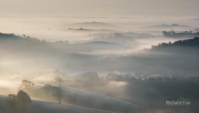 Bickington Veil