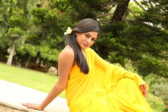 South Actress Deepika Das Hot in Yellow Sari Photos Set-2 (6)