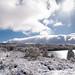 Neve no Parque Natural do Alvão-13