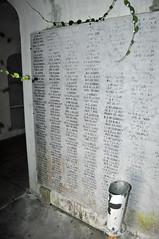 ArmyofNorthernVirginia names