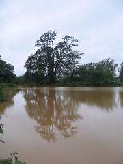 Kollibacchalu Dam -Malenadu Heavy Rain Effects Photography By Chinmaya M.Rao   (124)