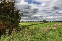Paysages de Flandres : Wandelpad Lo-Reninge