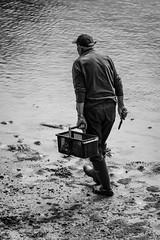Pêche à pied