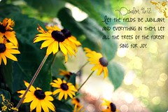 """Psalm 96:12 • <a style=""""font-size:0.8em;"""" href=""""http://www.flickr.com/photos/95703371@N00/14714652708/"""" target=""""_blank"""">View on Flickr</a>"""