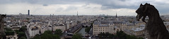 Pano view from Notre Dame bell tower