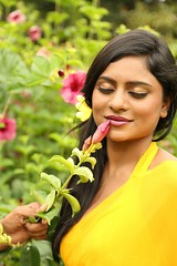 South Actress Deepika Das Hot in Yellow Sari Photos Set-2 (10)