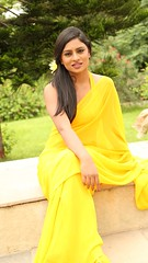 South Actress Deepika Das Hot in Yellow Sari Photos Set-2 (2)