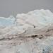Há montanhas de gelo que crescem a cada dia!