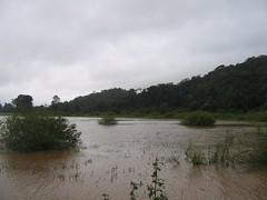 Kollibacchalu Dam -Malenadu Heavy Rain Effects Photography By Chinmaya M.Rao   (108)