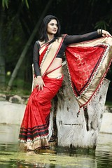 South Actress Deepika Das Traditional Photos Set-1 (4)