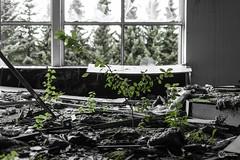 Lost Hotel-0050