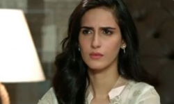 Tum Mile Episode 20 Full by Ary Digital Aired on 21st November 2016