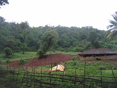Kollibacchalu Dam -Malenadu Heavy Rain Effects Photography By Chinmaya M.Rao   (103)
