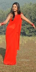 South Actress Deepika Das Hot in Red Sari Photos Set-5 (15)