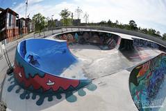 Skatepark de Saint-Ouen (93)