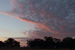 Sun rise, November 13, 2014.