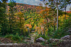 "Fall Hike • <a style=""font-size:0.8em;"" href=""http://www.flickr.com/photos/19514857@N00/15592132450/"" target=""_blank"">View on Flickr</a>"