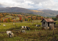 "Countryside, Vt • <a style=""font-size:0.8em;"" href=""http://www.flickr.com/photos/19514857@N00/15592283410/"" target=""_blank"">View on Flickr</a>"